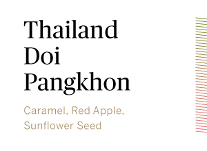 Thailand-Doi-Pangkhon-HONEYPROCESS