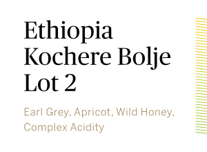 Ethiopia-Kochere-Bolje-Lot2