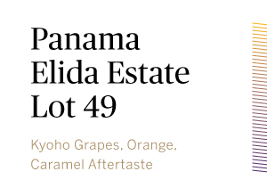 Panama-Elida-Estate-Lot-49